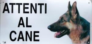 attenti al cane campionigratis.info