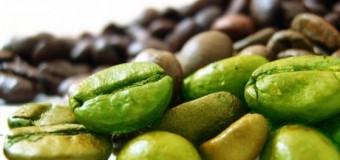Campione omaggio prodotto dimagrante caffe' verde
