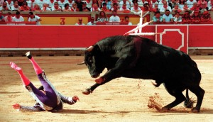 adesivi corrida campionigratis.info
