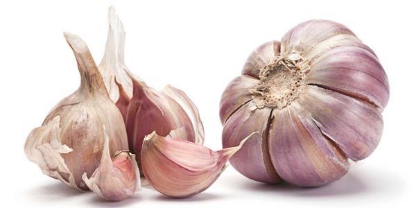 Campione omaggio aglio Sicil Garlic