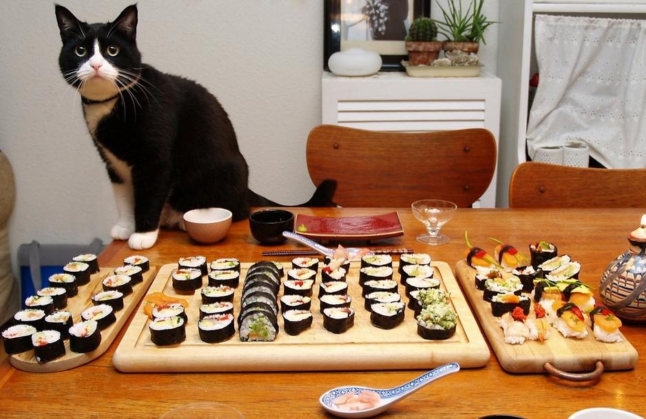 Gadget omaggio da Sushi Cat