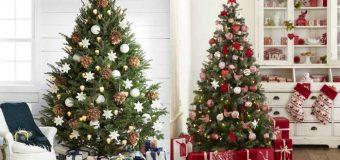 Concorso Bennet e Ferrero: in palio alberi di Natale