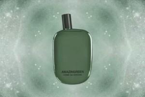 amazingreen campionigratis.info