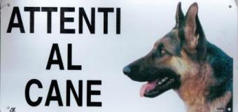 Targhetta per cani in regalo