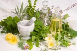 mediplant campionigratis.info