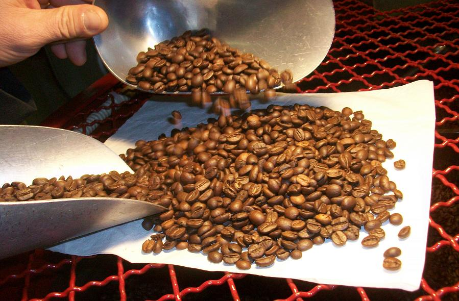 Campione gratis da Caffe' Grifo