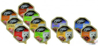Campioni omaggio cibo per cani Cesar