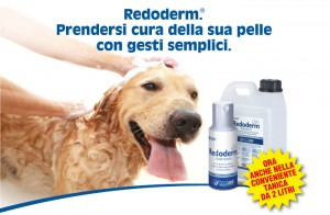 redoderm innovet campionigratis.info