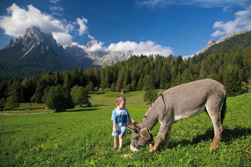 Guide turistiche omaggio: Trentino