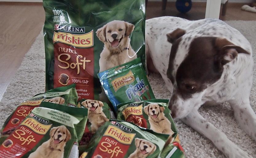 Campione omaggio cibo per cani Friskies Nutri Soft