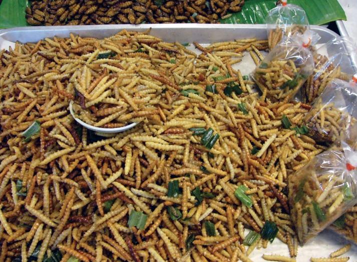 Gratis un sacchetto di insetti commestibili!