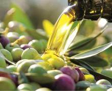 Campioncino omaggio olio extravergine di oliva Soprano